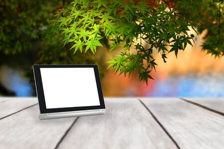 Computer tablet with white blank screen on wooden plank on maple leaves tree background, autumn season concept and smart technology idea