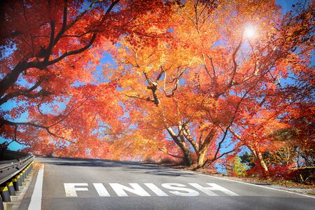 Finish word on road in the mountain with maple trees, business success concept