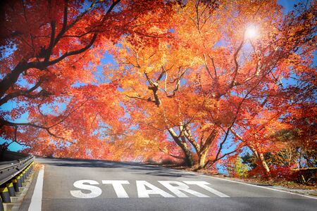 Start word on road in the mountain with maple trees, business success concept Stock Photo