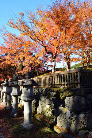 Koyasan, Japan - November 20, 2019: Koyasan town with beautiful japanese maple trees and gravestone in autumn season. Koyasan located in the Kansai region of Wakayama prefecture