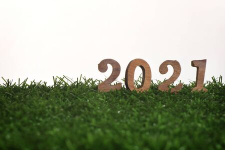 Wooden number 2021 on green grass on white background, happy new year concept and natural relaxation idea Фото со стока
