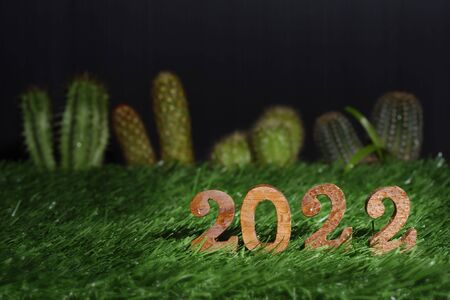 Wooden number 2022 on green grass with cactus and succulents plant background, happy new year concept and natural relaxation idea