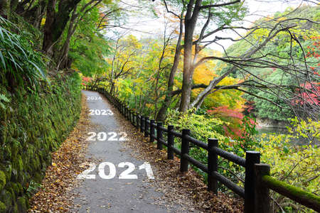 New year 2021 to 2024 on walkway in the mountain with maple trees, happy new year concept and natural background idea