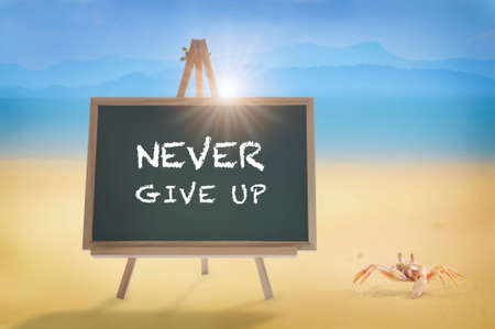 Never give up word on blackboard and crab on tropical beach background. Stay strong concept and believe in yourself idea