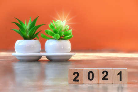 Cube number 2021 and plant tree on cement on amber background, happy new year concept and save the earth and sustainable energy idea