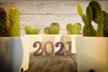 Number 2021 and cactus plant with sunlight on wooden table background. Happy new year concept and natural background idea Standard-Bild