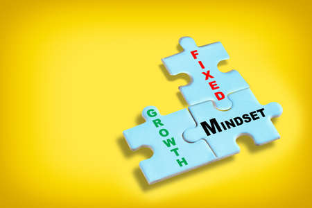 Growth mindset and fixed mindset written on blue puzzle jigsaw with shadow on yellow background. Potential development concept and good attitude motivation idea