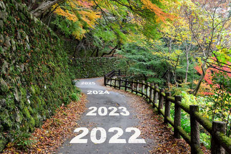 New year 2022 to 2025 on walkway in the mountain with maple trees. Happiness beginning to success concept and challenge idea Reklamní fotografie