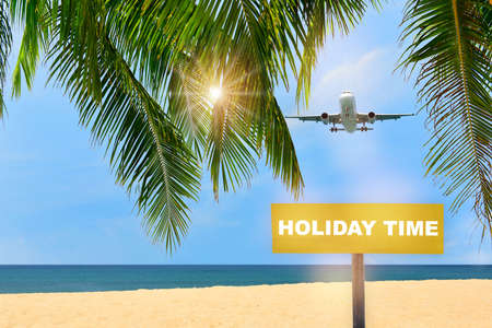 Commercial plane landing on tropical beach with coconut palm leaves and blue sky background. Happy time travel concept and business transportation idea