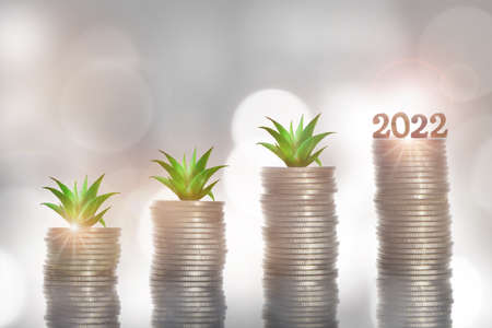 New year 2022 and growing money plant on stack of coins on abstract background. Future ahead return on investment for sustainability concept and business economic growth idea Reklamní fotografie