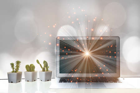 Computer laptop with shining ray on screen with cactus and succulents plant on the table. smart technology idea Reklamní fotografie