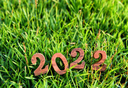 Wooden number 2022 on green grass background. Happy new year concept and natural idea