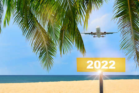 New year 2022 written on yellow sign and commercial plane flying on blue sky with coconut palm leaves and tropical beach background. Happiness beginning business travel concept and recovery idea Reklamní fotografie