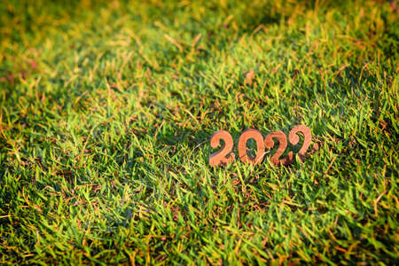 Wooden number 2022 with sunlight on green grass background. Happy new year concept and natural idea