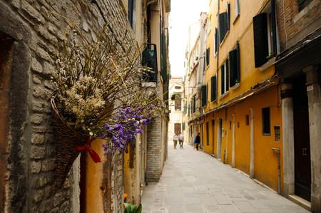 Vase of flowers in a venetian street