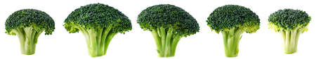 Collections of Fresh broccoli blocks for cooking isolated, set green broccoli on white background.