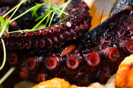 Grilled Octopus appetizer food concept. Seafood meal Octopus tentacle fried. Restaurant dish. Close-up