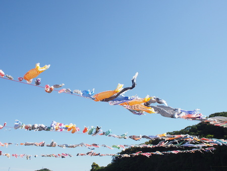 Pray for childrens healthy growth and fish ornaments, koinobori