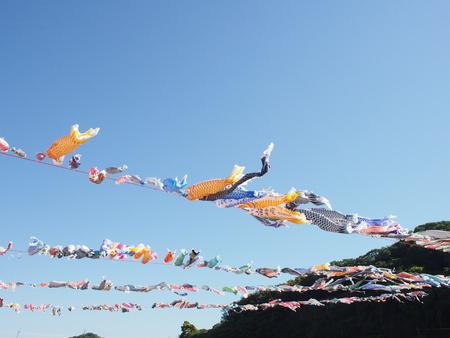 koinobori carp streamer japanese traditional ceremony