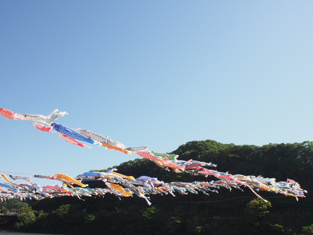 Koinobori Carp streamer praying for growth of Children Japans tradition 스톡 콘텐츠