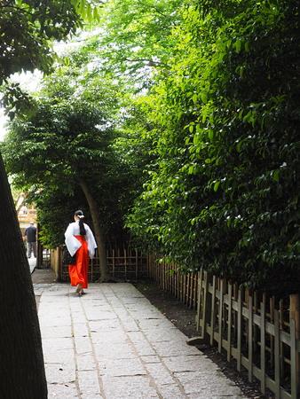 Miko Shrine maiden Imagens