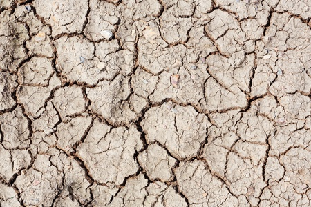 Dried and cracked soil land Stock Photo - 16310208