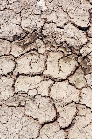 Dried and cracked soil land photo