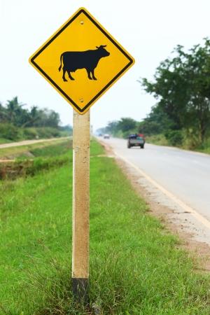 Cow warning sign on roadside photo