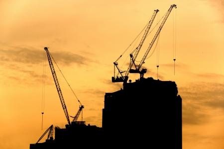 Crane silhouette on golden sky Stock Photo - 16723704