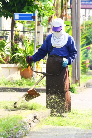 Worker trimming weed on footpath in morning sunlight Stock Photo - 16723661