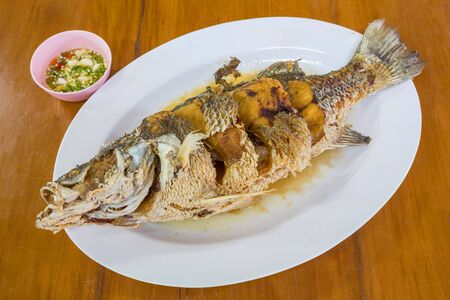 Seep Fried sea bass with fish sauce serve with seafood sauce Stock Photo - 17096099
