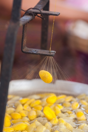 Silk making process by boil silkworm cocoon photo