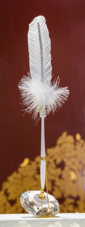 White pen decoration with white feather and golden chain photo