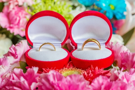 Wedding rings in red box on multi color flowers Stock Photo - 18421528