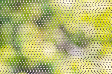 Wire Mesh Fence Protected Around The Garden From Animals Stock Photo,  Picture And Royalty Free Image. Image 19046061.