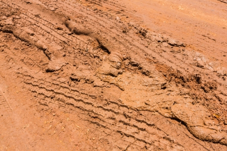 Wheel tracks on red color marshy road after raining Stock Photo - 19223460