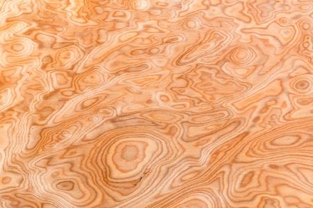 burl wood: Close up real burl wood grain texture background Stock Photo