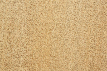 Close up real wood texture background photo