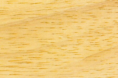 walnut burl: Close up real wood texture background