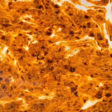 freeze dried: Textura abstracta de caf� liofilizado y peque�as burbujas durante la preparaci�n en una taza