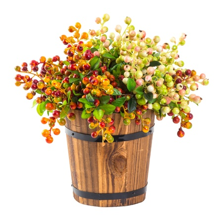 Bouquet of berry in wood bucket isolated on white photo
