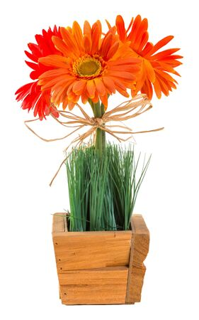 Bouquet of gerbera daisy decoration with grass in wood basket isolated on white photo