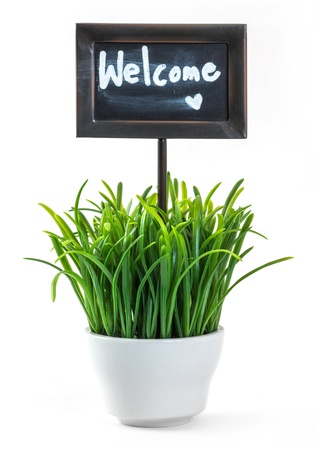 welcome sign: Welcome sign and green color grass in white ceramic pot Stock Photo