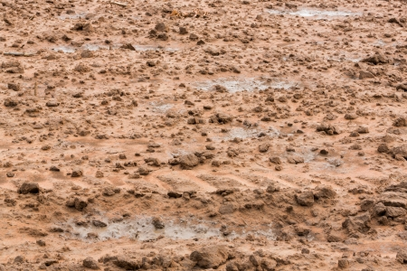 Soil preparation for planting in central Thailand Stock Photo - 21041008