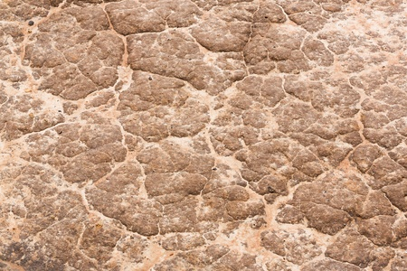 Close up soil texture on farm road surface after raining Stock Photo - 21047904