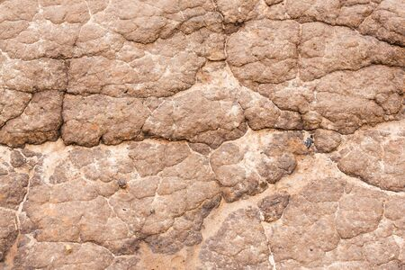 Close up soil texture on farm road surface after raining Stock Photo - 21047911