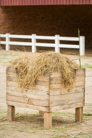Dry straw in wood bucket for feeding sheeps in farm Stock Photo - 21498769