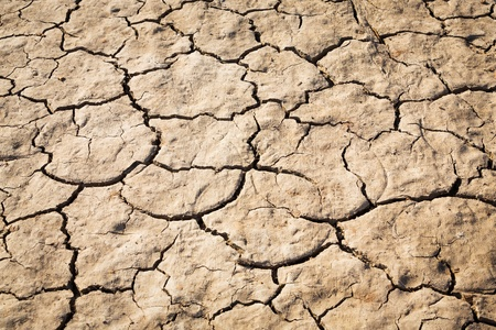 Close up cracked soil texture in strong sunlight Stock Photo - 21917842