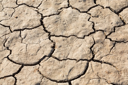 Close up cracked soil texture in strong sunlight Stock Photo - 21917853