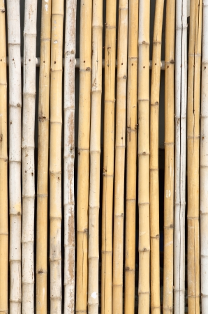 Close up old and dirty bamboo used as rural house wall photo